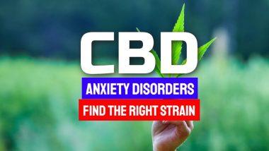 CBD-Anxiety-Disorders-1024x576-1