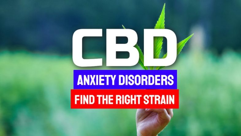 CBD-Anxiety-Disorders-1024x576-1