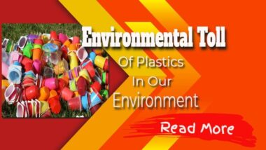 environmental-toll-of-plastics-in-our-environment-1024x576-1